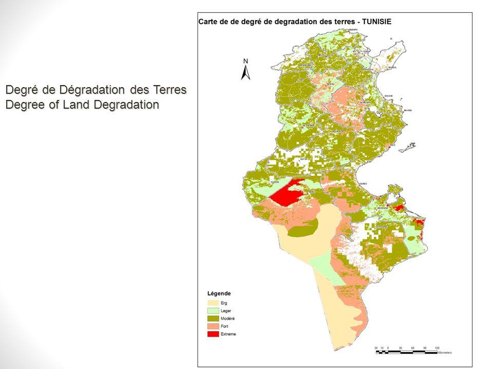 Degré de Dégradation des Terres Degree of Land Degradation