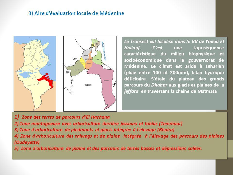 3) Aire d'évaluation locale de Médenine Le Transect est localise dans le BV de l'oued El Hallouf. C'est une toposéquence caractéristique du milieu bio