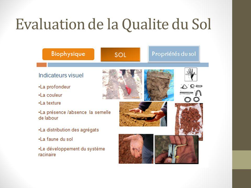 Evaluation de la Qualite du Sol