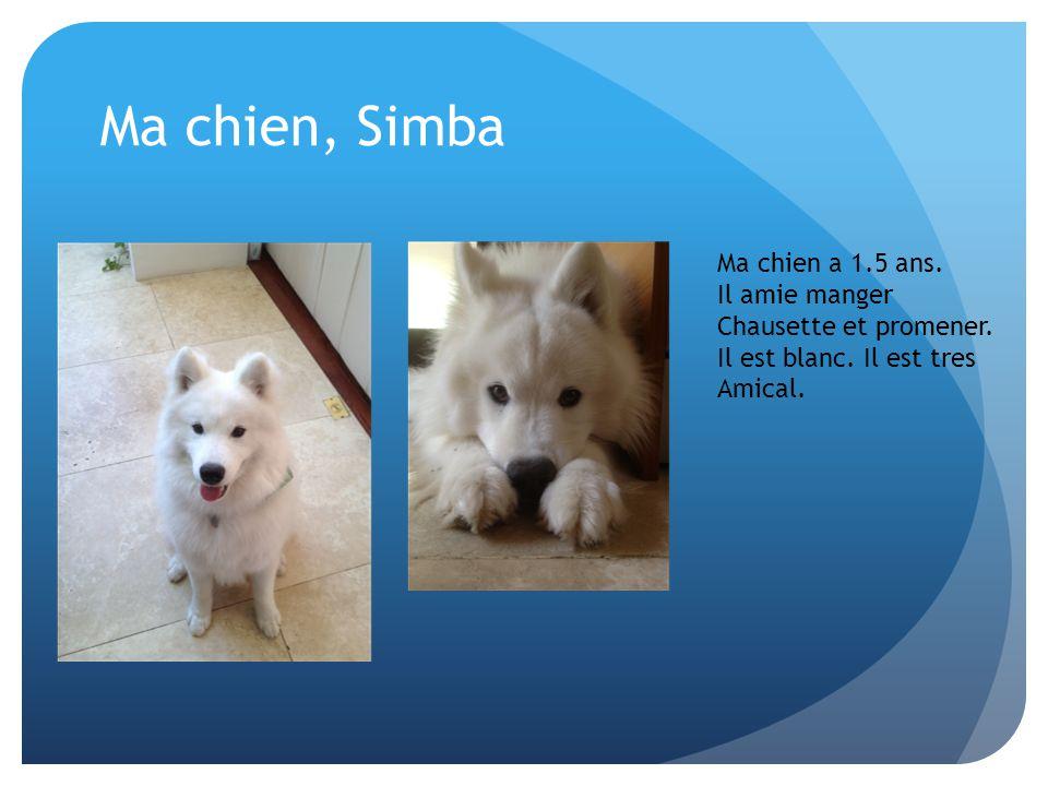 Ma chien, Simba Ma chien a 1.5 ans. Il amie manger Chausette et promener. Il est blanc. Il est tres Amical.