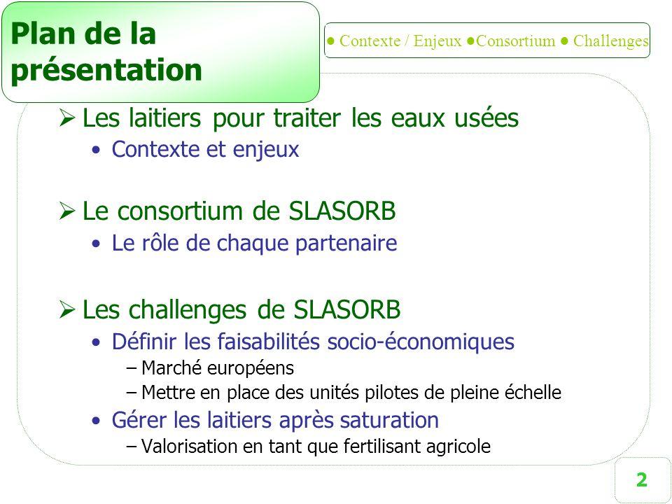 3 SLASORB  SLASORB : Using SLAg as SORBent to remove phosphorus from wastewater (= Utiliser les laitiers sidérurgiques comme matériau réactif pour retenir le phosphore des eaux usées)  Projet Européen (RFCS) 3 ans (juil 2009 – juil 2012)  Démontrer à taille réelle la possibilité d'utiliser des laitiers sidérurgiques comme matériaux de rétention du phosphore présent dans les eaux usées Développement d'un nouveau filtre pour le traitement des eaux usées: Gros marché potentiel pour mettre aux normes les stations d épuration à filtres plantés de roseaux existantes SLASORB