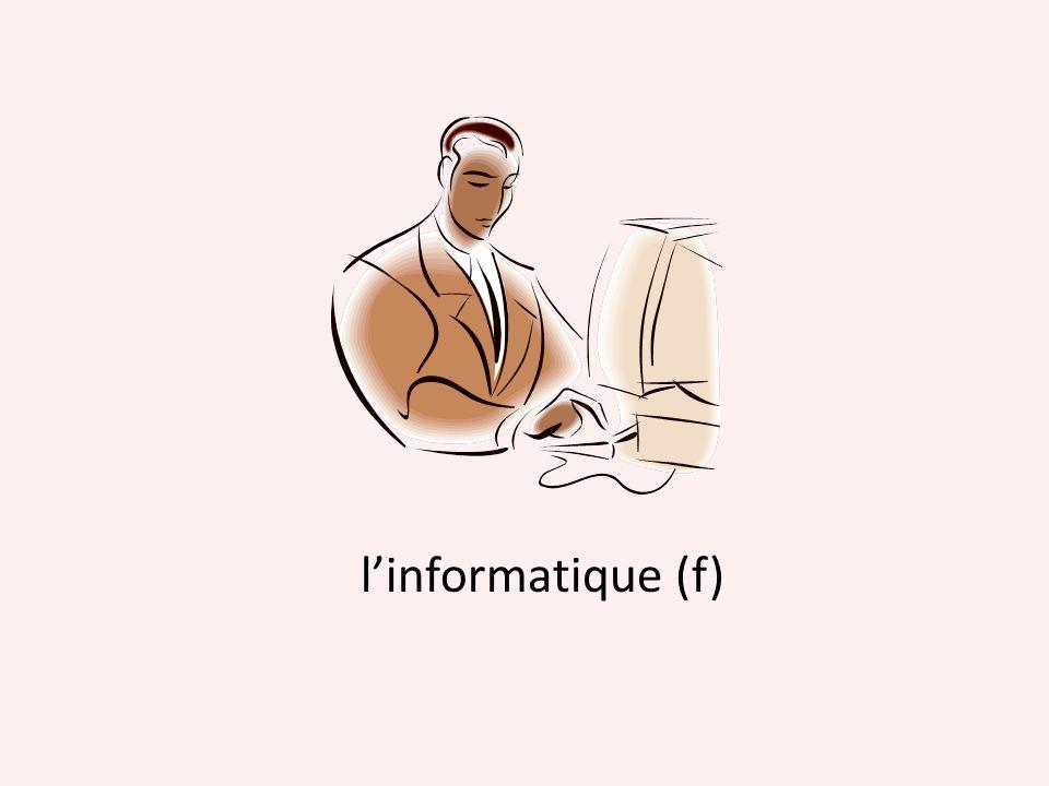l'informatique (f)
