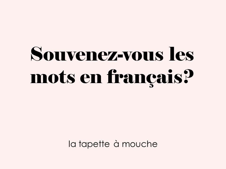 Souvenez-vous les mots en français? la tapette à mouche