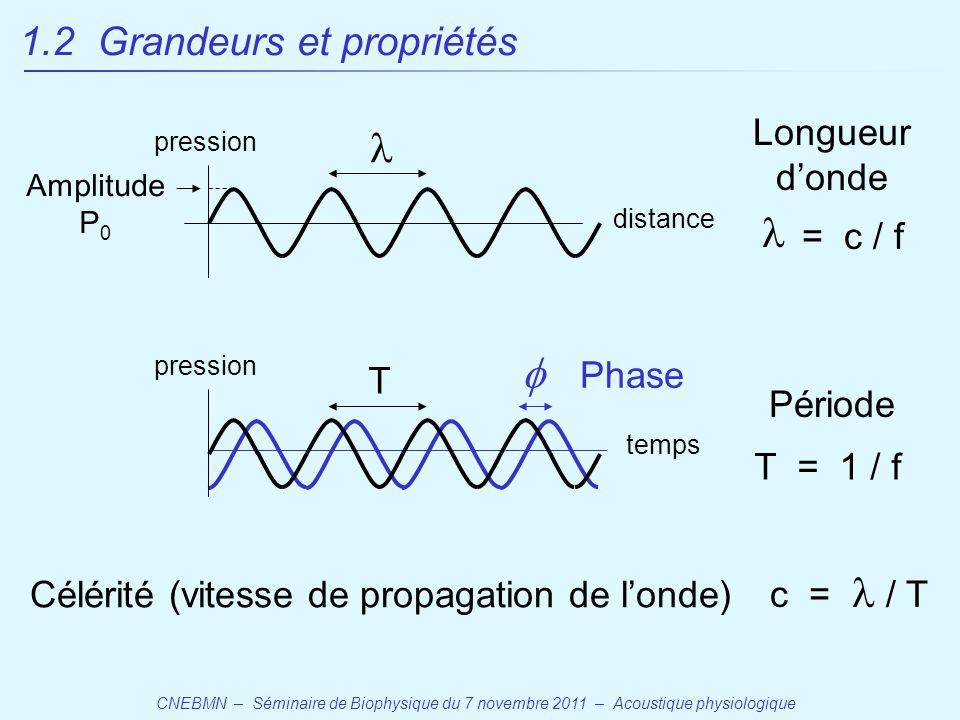 CNEBMN – Séminaire de Biophysique du 7 novembre 2011 – Acoustique physiologique temps distance pression Longueur d'onde = c / f T = 1 / f Période T Célérité (vitesse de propagation de l'onde) c = / T  Phase Amplitude P 0 1.2 Grandeurs et propriétés