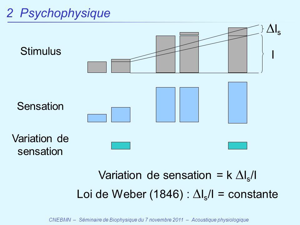 CNEBMN – Séminaire de Biophysique du 7 novembre 2011 – Acoustique physiologique Variation de sensation = k  I s /I Stimulus Sensation Variation de sensation Loi de Weber (1846) :  I s /I = constante 2 Psychophysique IsIs I