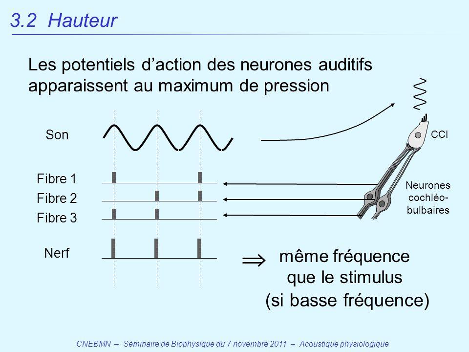 CNEBMN – Séminaire de Biophysique du 7 novembre 2011 – Acoustique physiologique Les potentiels d'action des neurones auditifs apparaissent au maximum de pression même fréquence que le stimulus (si basse fréquence) CCI Neurones cochléo- bulbaires Nerf Fibre 1 Fibre 2 Fibre 3 Son 3.2 Hauteur