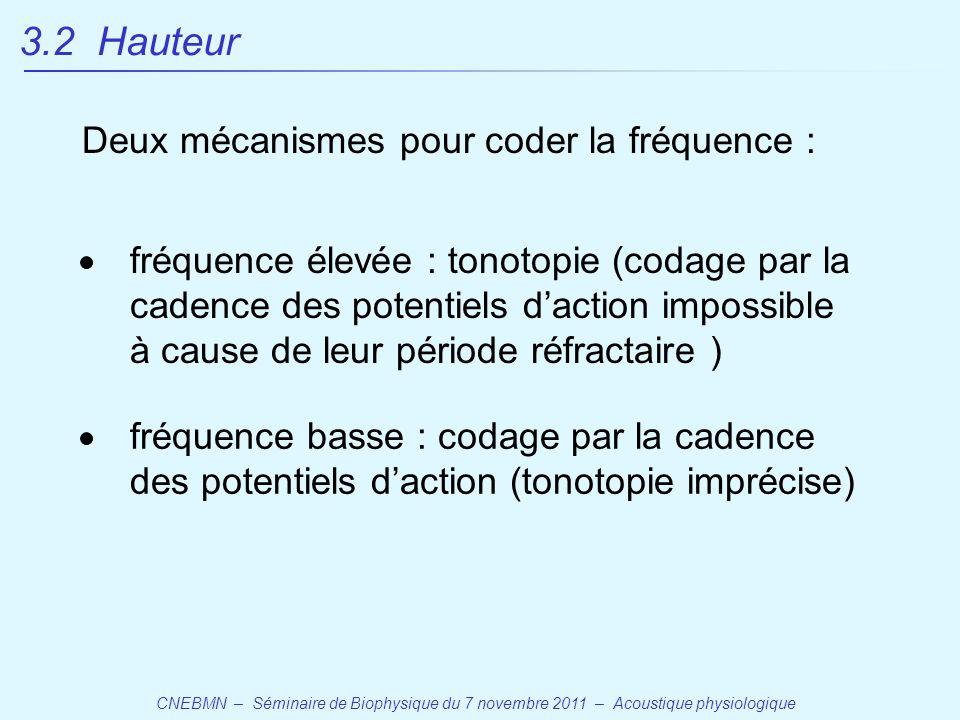 CNEBMN – Séminaire de Biophysique du 7 novembre 2011 – Acoustique physiologique fréquence élevée : tonotopie (codage par la cadence des potentiels d'action impossible à cause de leur période réfractaire ) fréquence basse : codage par la cadence des potentiels d'action (tonotopie imprécise) Deux mécanismes pour coder la fréquence : 3.2 Hauteur
