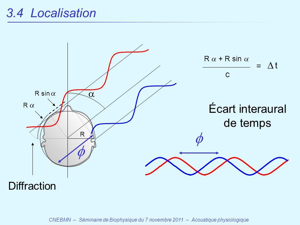 CNEBMN – Séminaire de Biophysique du 7 novembre 2011 – Acoustique physiologique  R R sin  R    Écart interaural de temps R  + R sin  c tt = Diffraction 3.4 Localisation