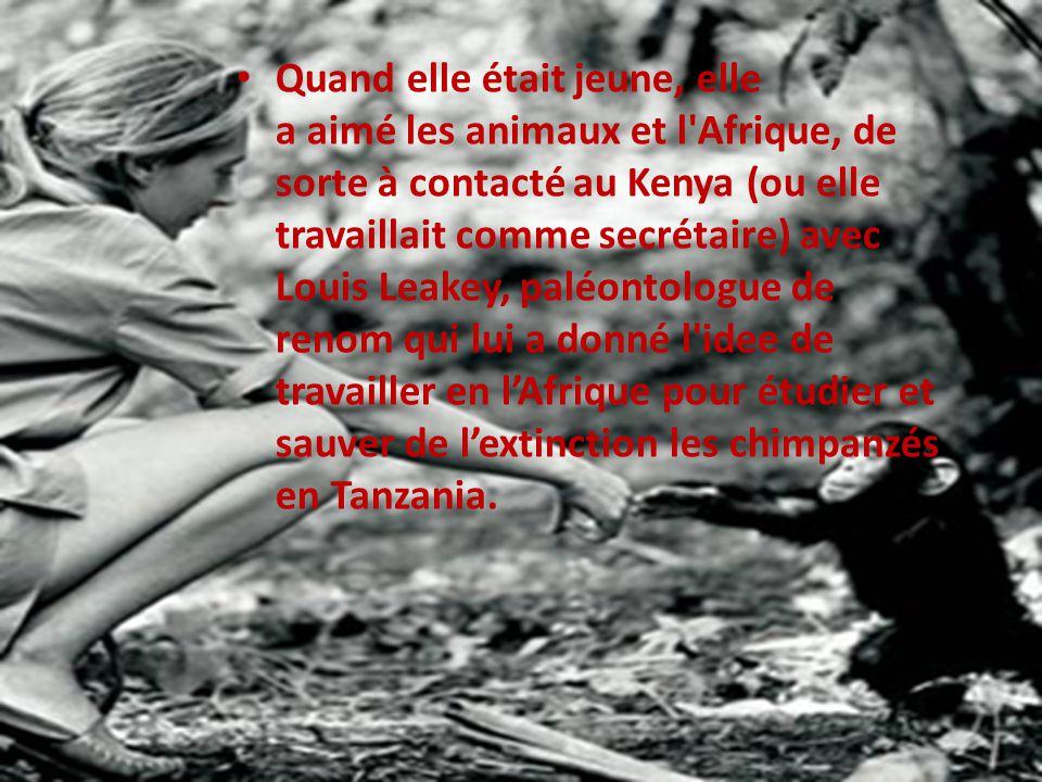 Quand elle était jeune, elle a aimé les animaux et l Afrique, de sorte à contacté au Kenya (ou elle travaillait comme secrétaire) avec Louis Leakey, paléontologue de renom qui lui a donné l idee de travailler en l'Afrique pour étudier et sauver de l'extinction les chimpanzés en Tanzania.