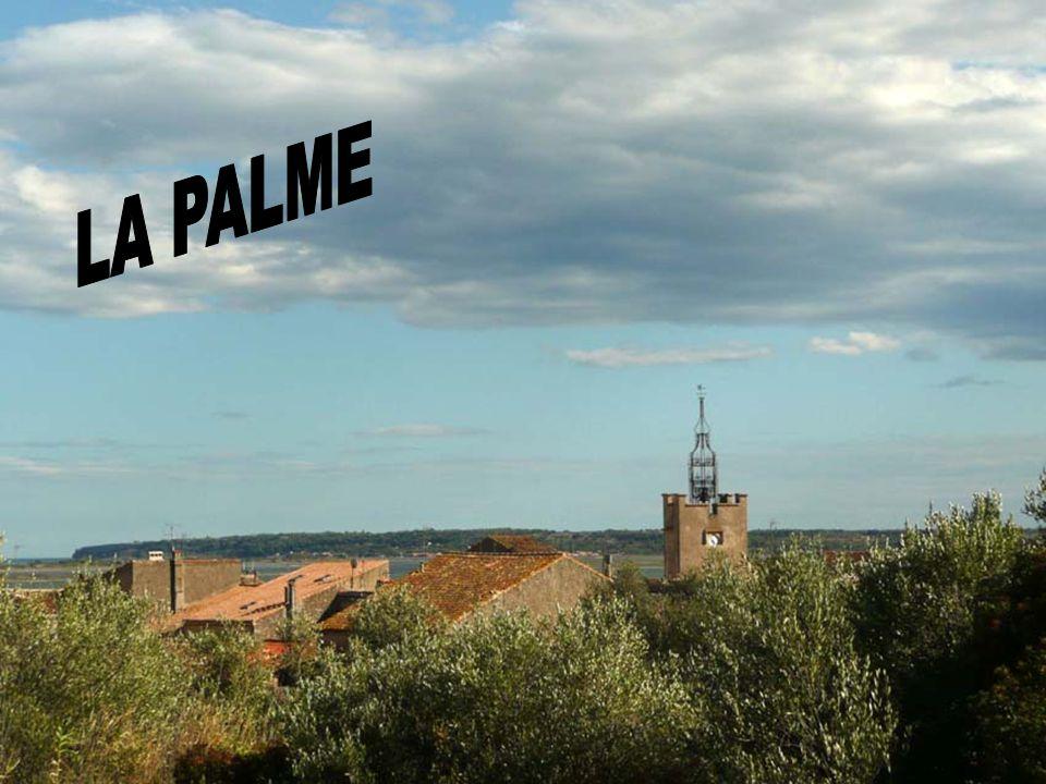 Étapes de Montage d'une éolienne. Dans l'Aude les éoliennes sont nombreuses, sur les Hauteurs de La Palme, d'un seul regard sur les Corbières à 180 de