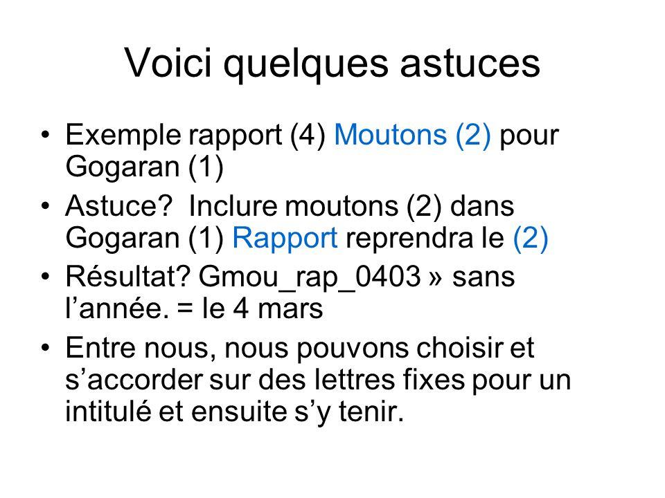 Voici quelques astuces Exemple rapport (4) Moutons (2) pour Gogaran (1) Astuce.