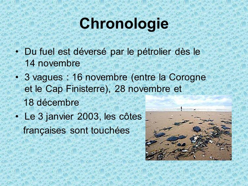 Chronologie Du fuel est déversé par le pétrolier dès le 14 novembre 3 vagues : 16 novembre (entre la Corogne et le Cap Finisterre), 28 novembre et 18