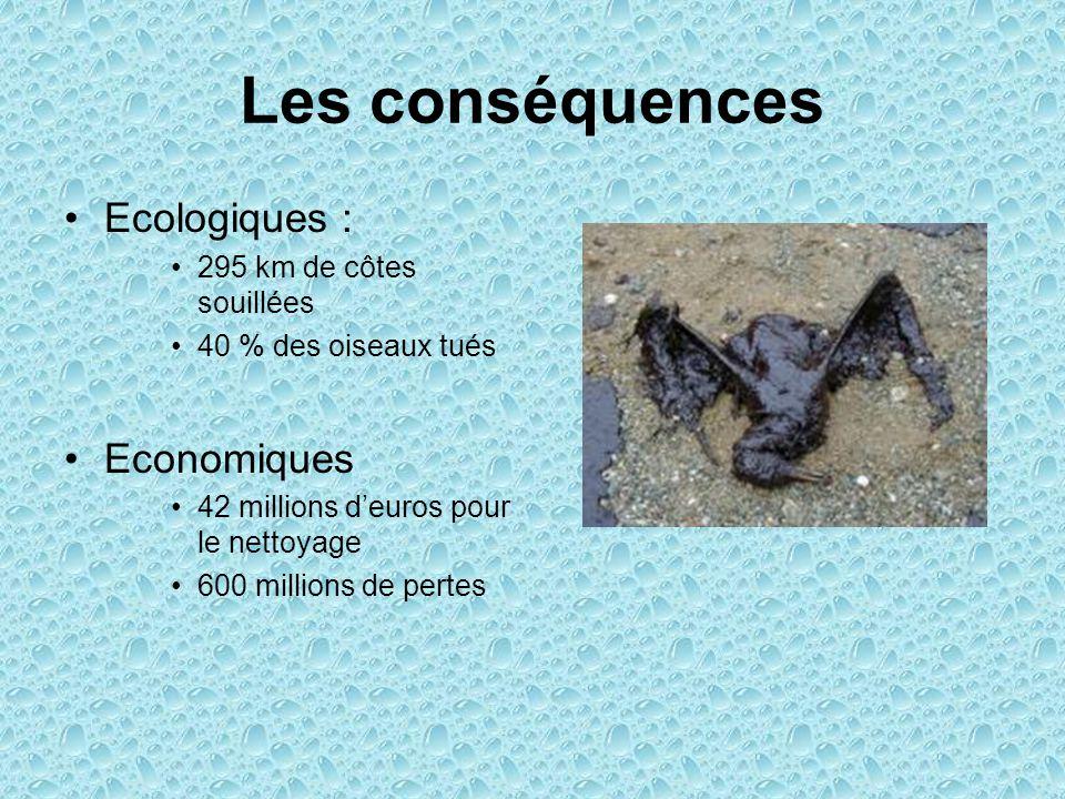 Les conséquences Ecologiques : 295 km de côtes souillées 40 % des oiseaux tués Economiques 42 millions d'euros pour le nettoyage 600 millions de pertes