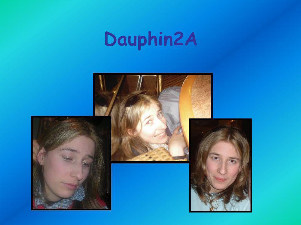 Dauphin2A