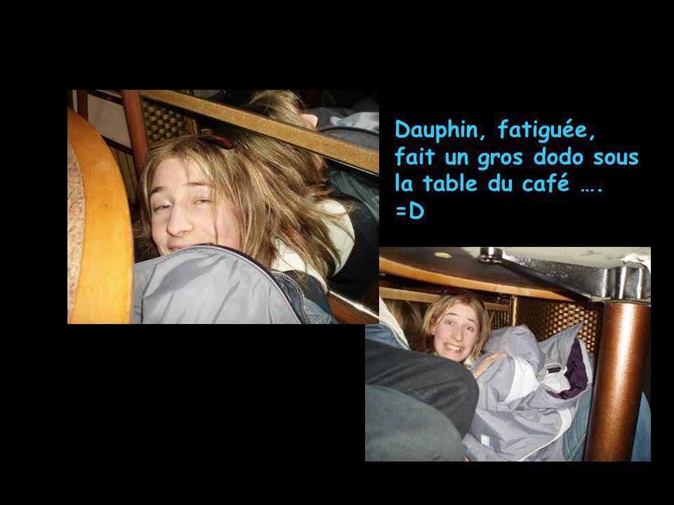 Dauphin, fatiguée, fait un gros dodo sous la table du café …. =D
