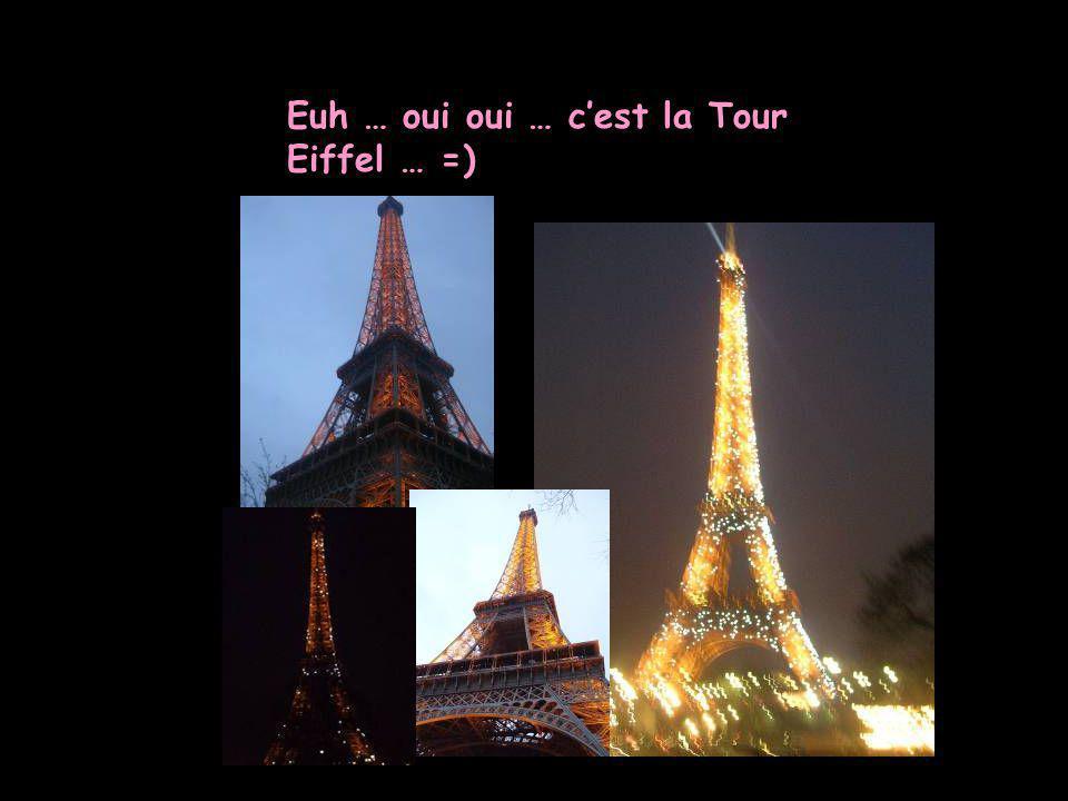 Euh … oui oui … c'est la Tour Eiffel … =)