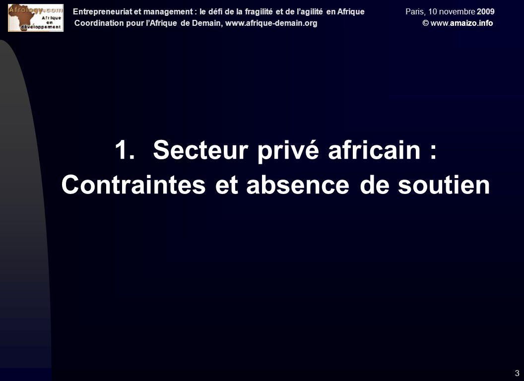 Entrepreneuriat et management : le défi de la fragilité et de l'agilité en Afrique Paris, 10 novembre 2009 Coordination pour l'Afrique de Demain, www.afrique-demain.org © www.amaizo.info 3 1.Secteur privé africain : Contraintes et absence de soutien