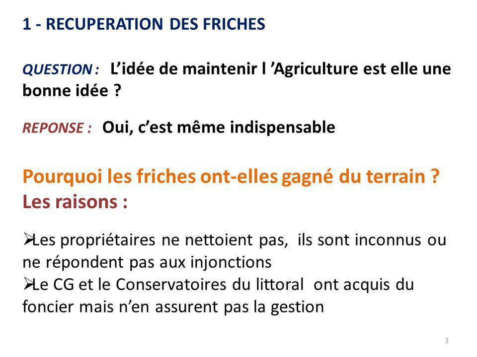 3 1 - RECUPERATION DES FRICHES QUESTION : L'idée de maintenir l 'Agriculture est elle une bonne idée ? REPONSE : Oui, c'est même indispensable Pourquo