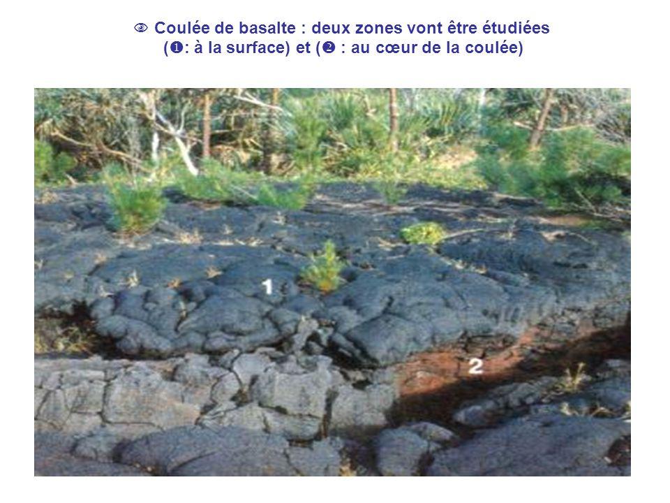  Coulée de basalte : deux zones vont être étudiées (  : à la surface) et (  : au cœur de la coulée)