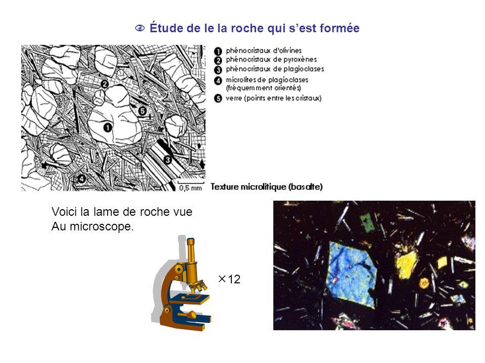  Étude de le la roche qui s'est formée Voici la lame de roche vue Au microscope.  12