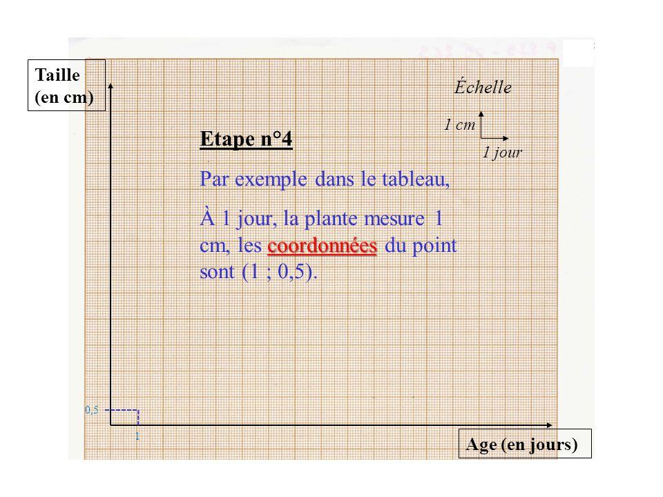 Taille (en cm) Age (en jours) Échelle 1 cm 1 jour