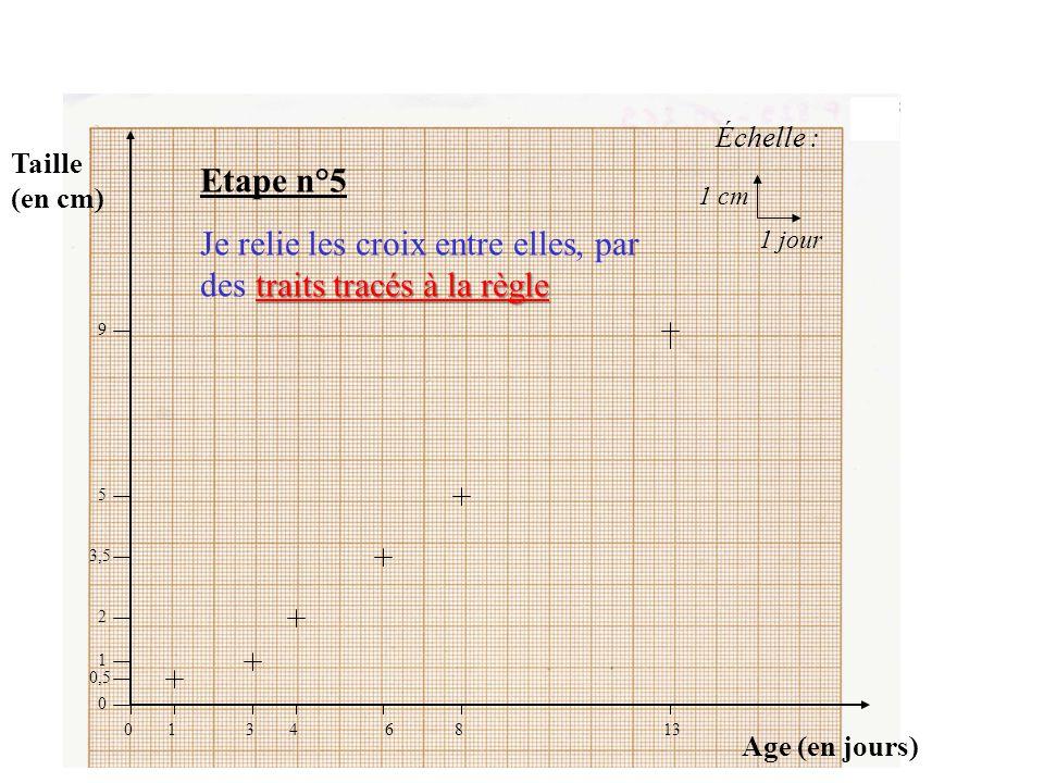 Taille (en cm) Age (en jours) Échelle : 1 cm 1 jour 01346813 9 5 3,5 2 1 0,5 0 VOICI le résultat obtenu sans les traits de construction