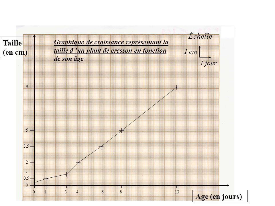 J 'indique le titre du graphique et je le souligne (en utilisant toujours mon crayon de papier)