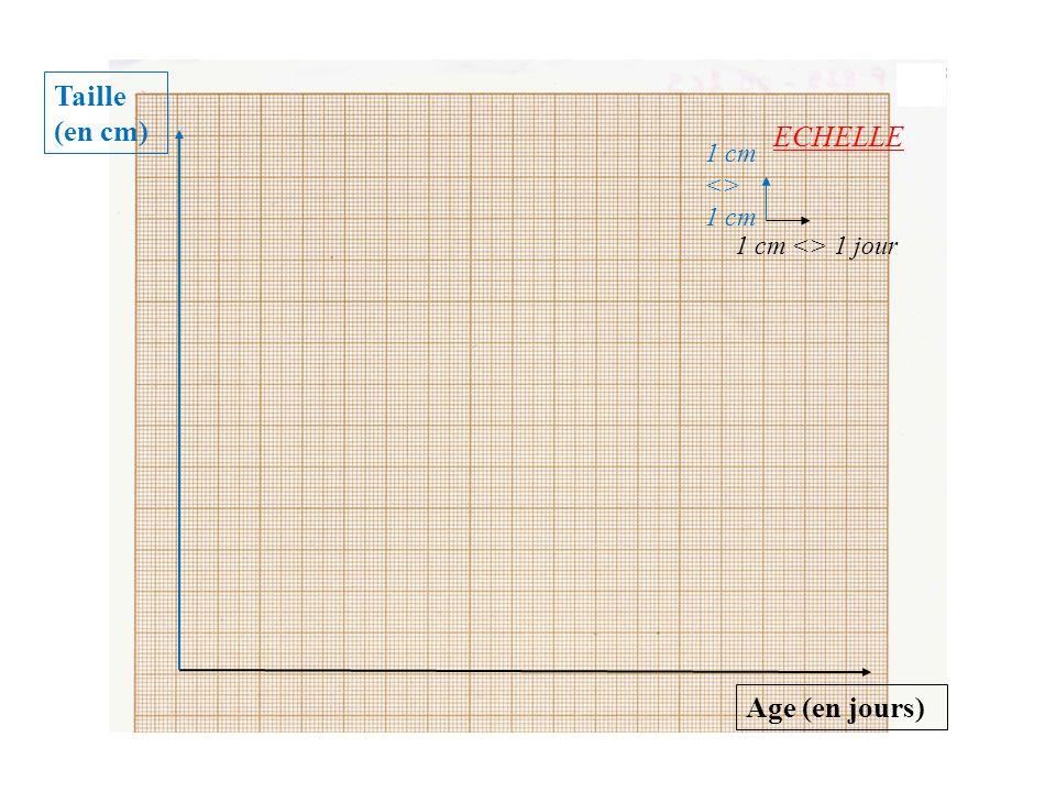 Taille (en cm) Age (en jours) 1 cm <> 1 cm ECHELLE 1 cm <> 1 jour