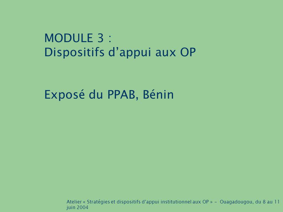 Atelier « Stratégies et dispositifs d'appui institutionnel aux OP » - Ouagadougou, du 8 au 11 juin 2004 MODULE 3 : Dispositifs d'appui aux OP Exposé du PPAB, Bénin