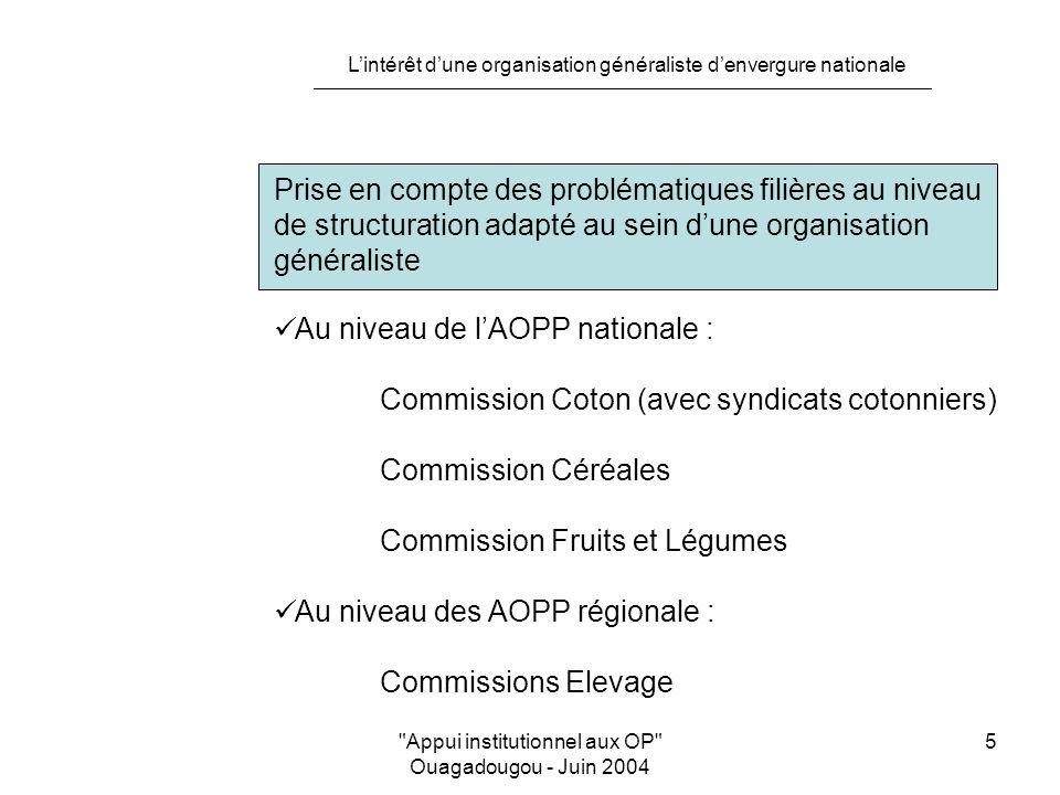 L'intérêt d'une organisation généraliste d'envergure nationale Appui institutionnel aux OP Ouagadougou - Juin 2004 5 Prise en compte des problématiques filières au niveau de structuration adapté au sein d'une organisation généraliste Au niveau de l'AOPP nationale : Commission Coton (avec syndicats cotonniers) Commission Céréales Commission Fruits et Légumes Au niveau des AOPP régionale : Commissions Elevage