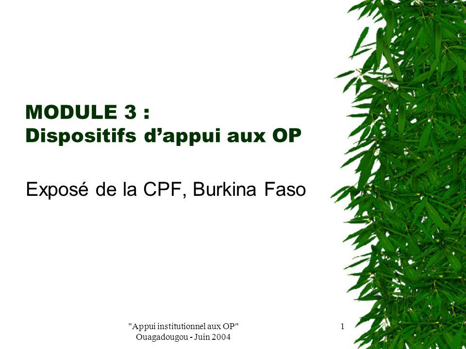 Appui institutionnel aux OP Ouagadougou - Juin 2004 11  « la Professionnalisation » : la CPF a donné sa définition, un contenu de sa vision de la professionnalisation En collaboration avec le ministère de l'agriculture, la CPF a contribuée à la sensibilisation et à la mise en place des structures dans le cadre du PA/OPA et les CRA de 2002 à 2004.