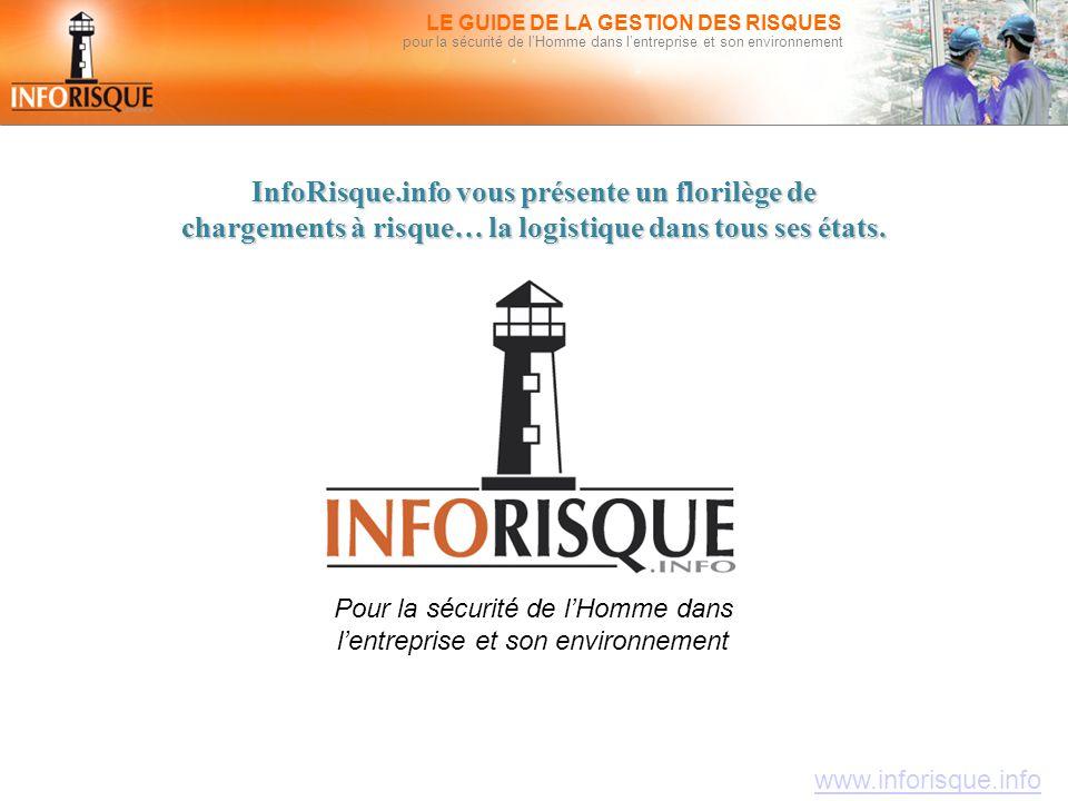 www.inforisque.info LE GUIDE DE LA GESTION DES RISQUES pour la sécurité de l'Homme dans l'entreprise et son environnement InfoRisque.info vous présent