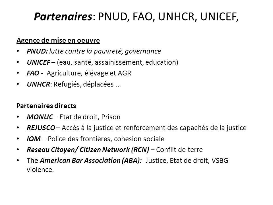 Partenaires: PNUD, FAO, UNHCR, UNICEF, Agence de mise en oeuvre PNUD: lutte contre la pauvreté, governance UNICEF – (eau, santé, assainissement, educa