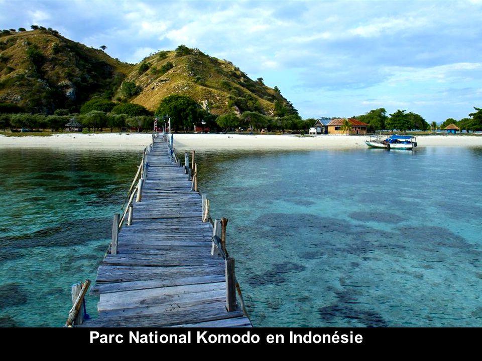 Parc National Komodo en Indonésie