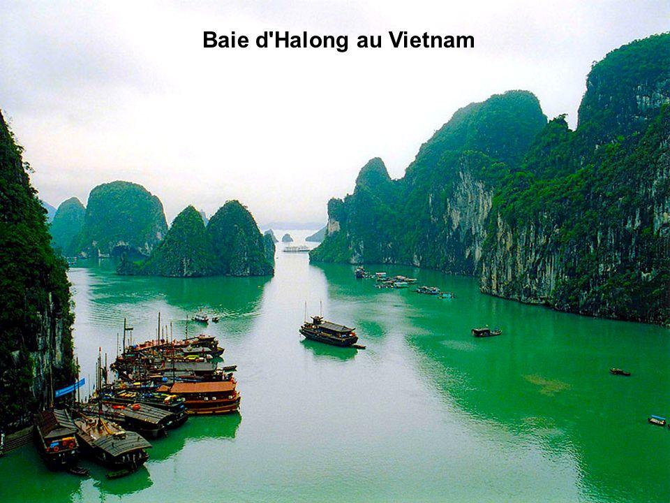 Baie d Halong au Vietnam