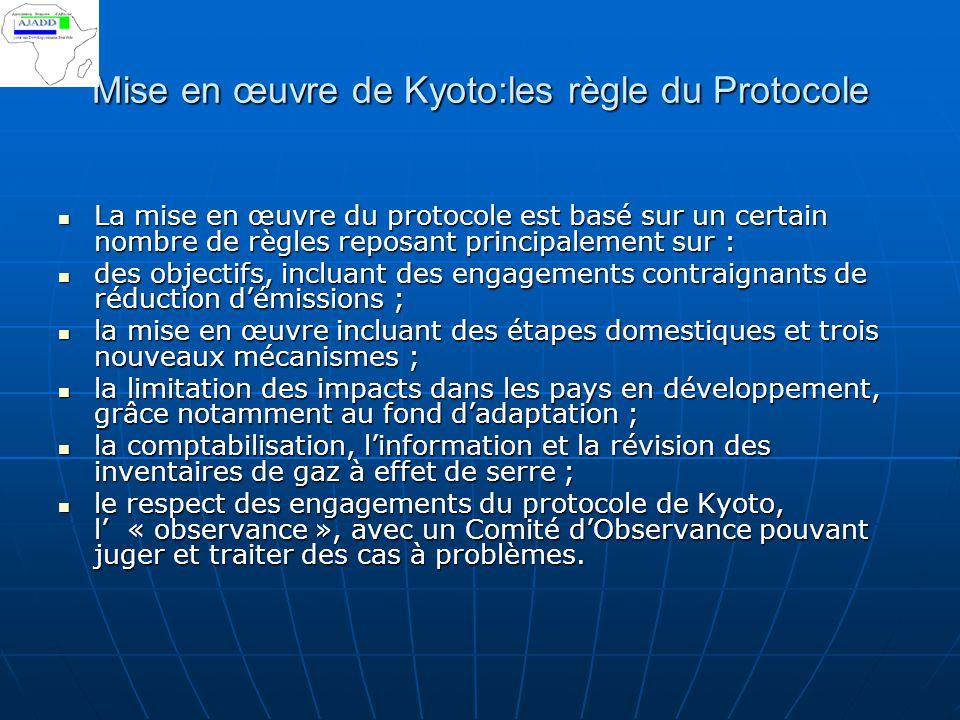 Mise en œuvre de Kyoto:les règle du Protocole La mise en œuvre du protocole est basé sur un certain nombre de règles reposant principalement sur : La