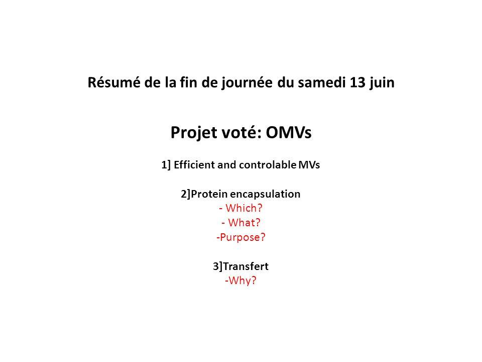 Résumé de la fin de journée du samedi 13 juin Projet voté: OMVs 1] Efficient and controlable MVs 2]Protein encapsulation - Which.