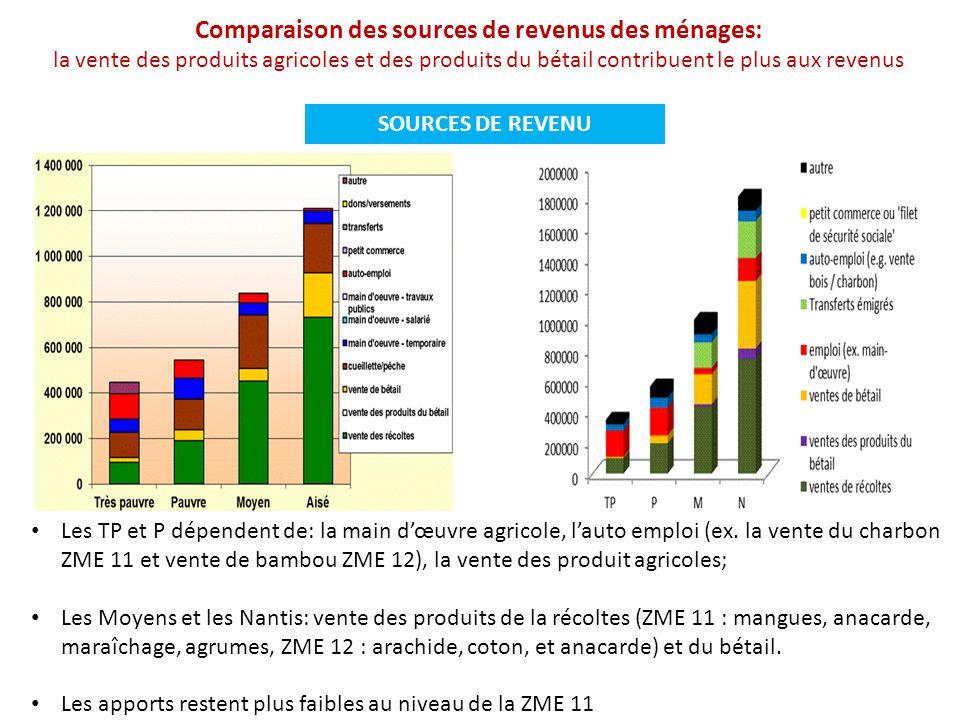 SOURCES DE REVENU Les TP et P dépendent de: la main d'œuvre agricole, l'auto emploi (ex. la vente du charbon ZME 11 et vente de bambou ZME 12), la ven