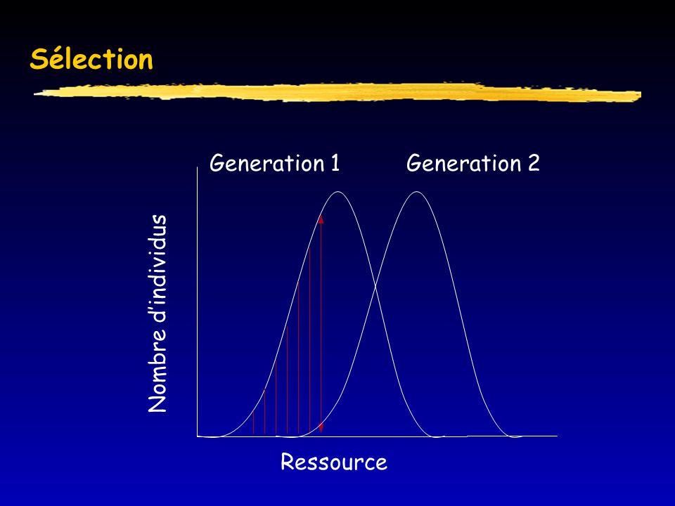Sélection Ressource Nombre d'individus Generation 1Generation 2