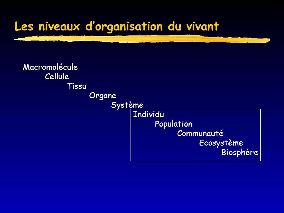 Définitions  Population  écologie  génétique  Communauté  Ecosystème: biocénose + biotope  Et l'espèce?