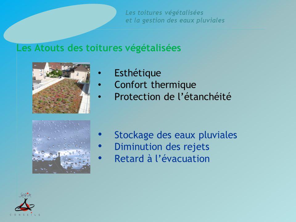Les toitures végétalisées et la gestion des eaux pluviales Stockage des eaux pluviales Diminution des rejets Retard à l'évacuation Esthétique Confort