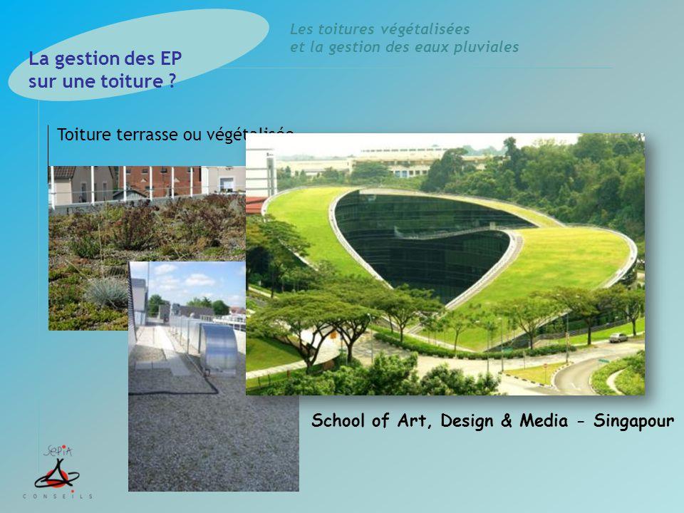 Les toitures végétalisées et la gestion des eaux pluviales Toiture terrasse ou végétalisée La gestion des EP sur une toiture ? School of Art, Design &