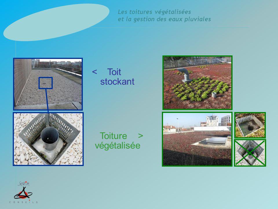 Les toitures végétalisées et la gestion des eaux pluviales Retenue temporaire des eaux (DTU) Toits terrasses avec gravillons Système de régulation puis surverse Structure en maçonnerie Toit stockant