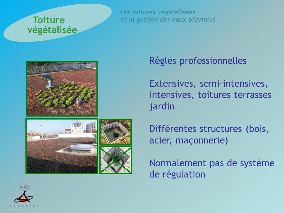 Les toitures végétalisées et la gestion des eaux pluviales Règles professionnelles Extensives, semi-intensives, intensives, toitures terrasses jardin