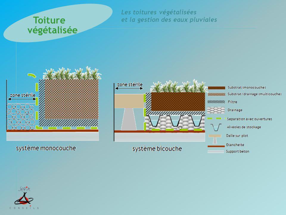 Les toitures végétalisées et la gestion des eaux pluviales Merci de votre attention…