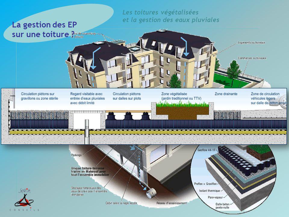 Les toitures végétalisées et la gestion des eaux pluviales La gestion des EP sur une toiture ?