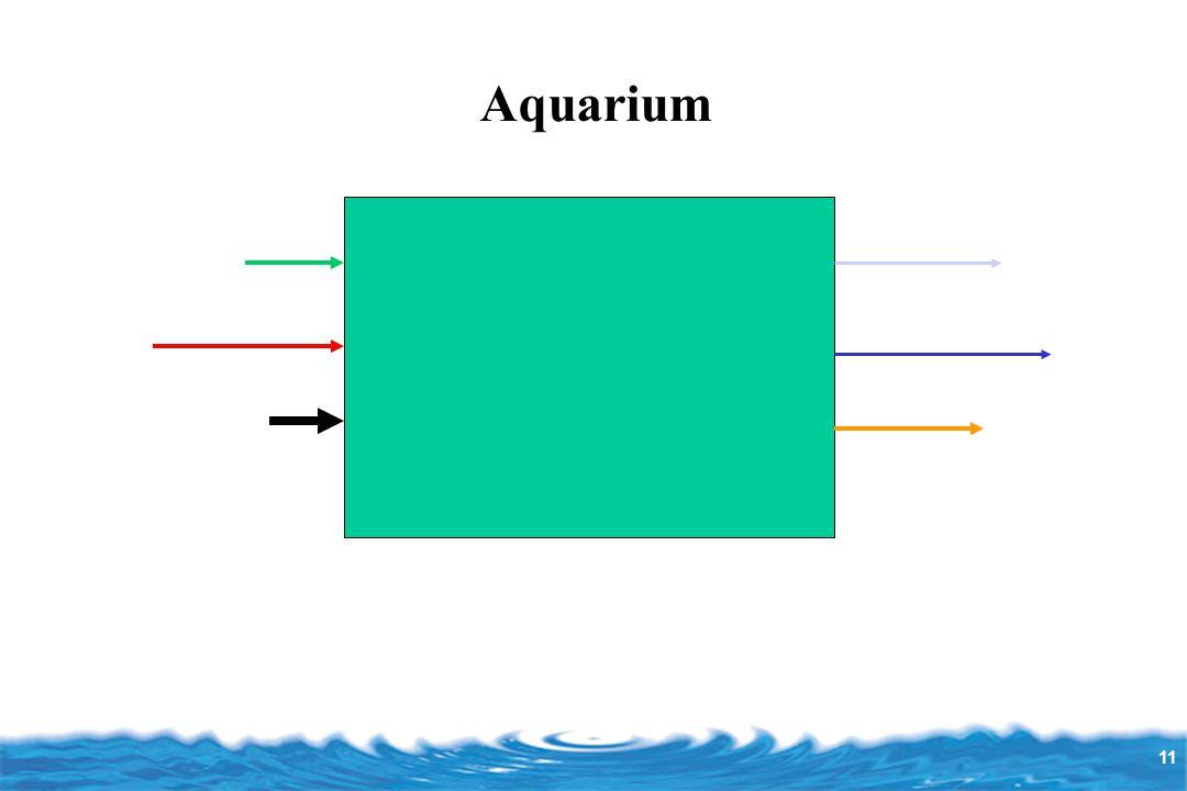 11 Aquarium