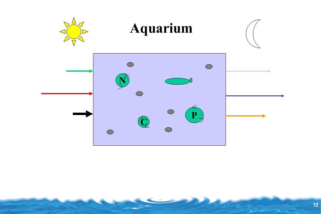 12 Aquarium N P C
