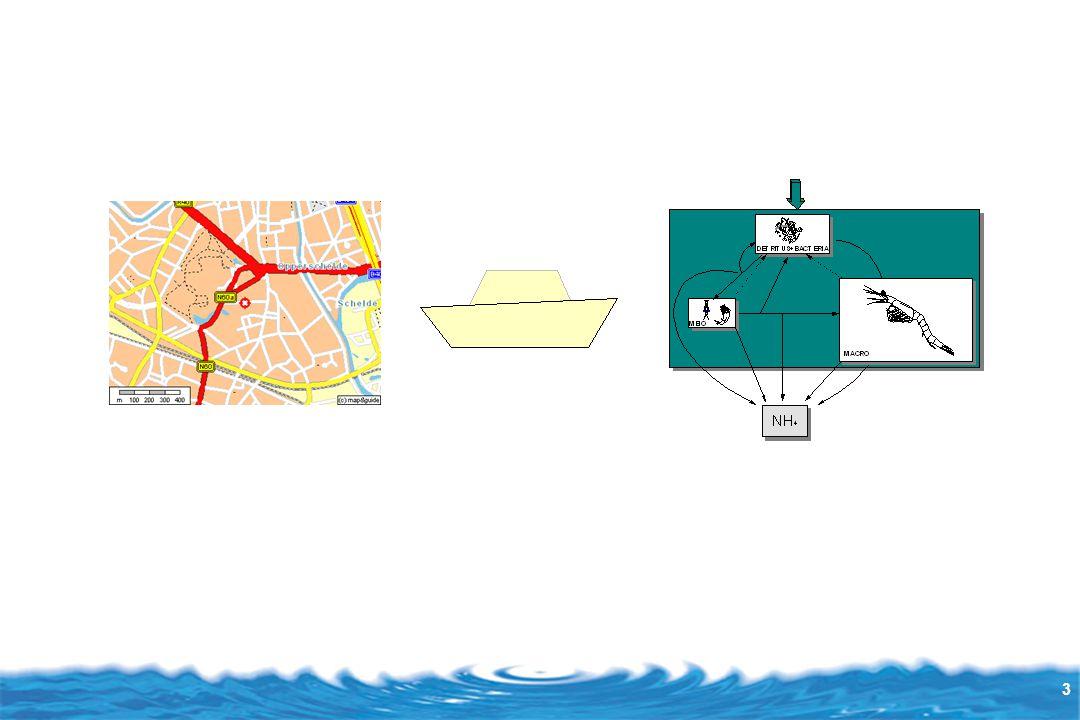 4 Modélisation : construire le modèle Modélisation et simulation Physique Graphique ReprésentationModélisationSimulation MathématiqueRelations Ex : loi des gaz parfaits, loi de la pesanteur Logiciel Ex : système expert Montage de l'expérience Ex: canal expérimental Dessins Ex : visage Animation Ex: vieillissement du visage Expérience Ex: visualisation du transport des algues en suspension Simulation : faire parler le modèle = le modèle en action