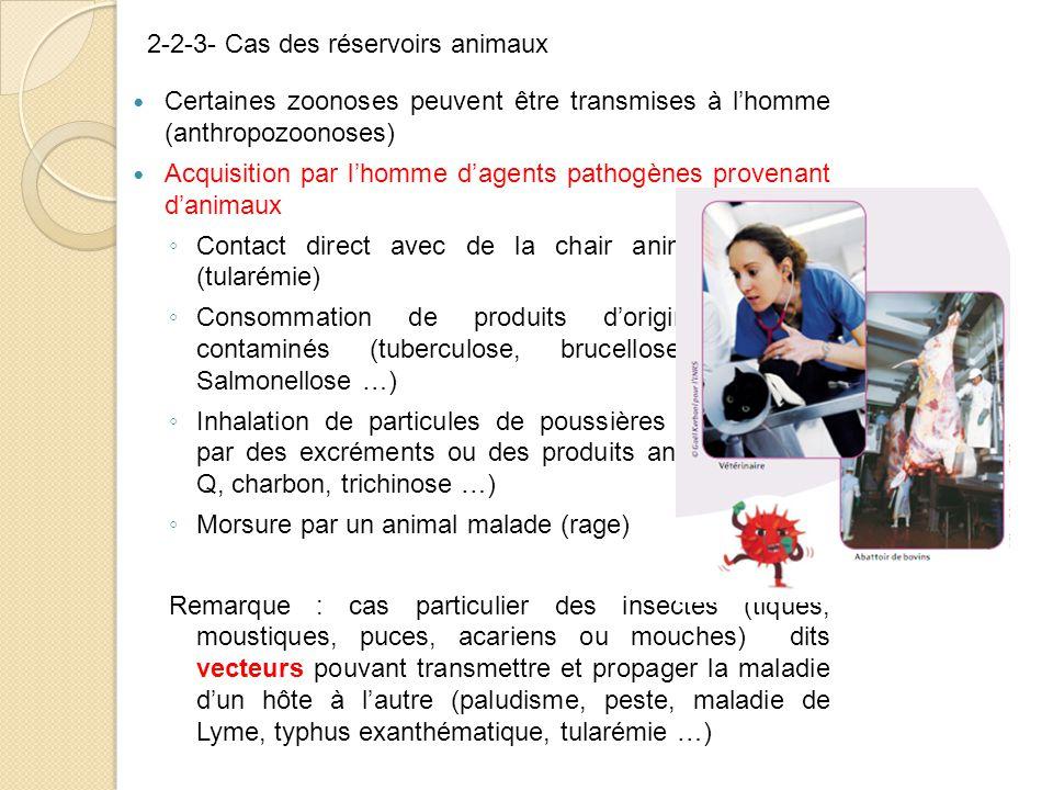 Certaines zoonoses peuvent être transmises à l'homme (anthropozoonoses) Acquisition par l'homme d'agents pathogènes provenant d'animaux ◦ Contact direct avec de la chair animale malade (tularémie) ◦ Consommation de produits d'origine animale contaminés (tuberculose, brucellose, E coli, Salmonellose …) ◦ Inhalation de particules de poussières contaminées par des excréments ou des produits animaux (fièvre Q, charbon, trichinose …) ◦ Morsure par un animal malade (rage) Remarque : cas particulier des insectes (tiques, moustiques, puces, acariens ou mouches) dits vecteurs pouvant transmettre et propager la maladie d'un hôte à l'autre (paludisme, peste, maladie de Lyme, typhus exanthématique, tularémie …) 2-2-3- Cas des réservoirs animaux